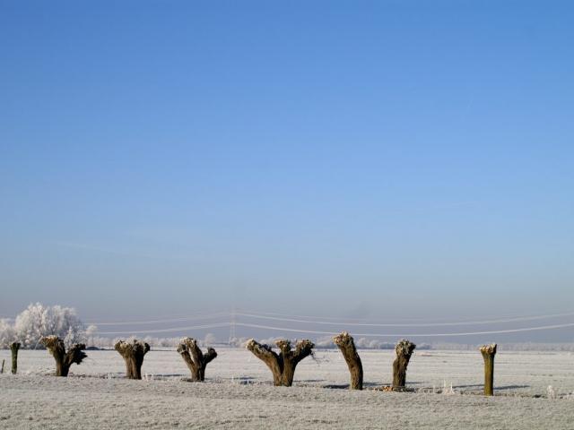 Cees van Vliet - Winter 1