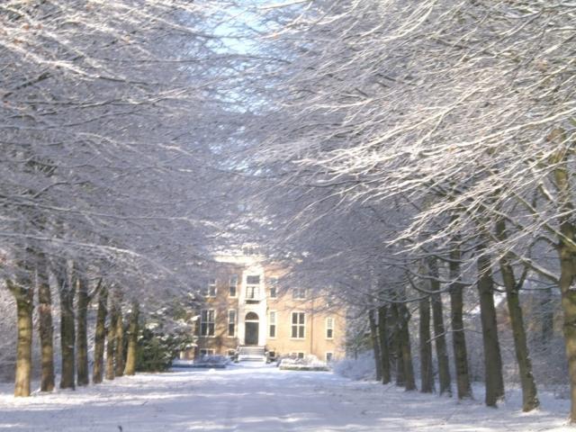 Cees van Vliet - Winter 2